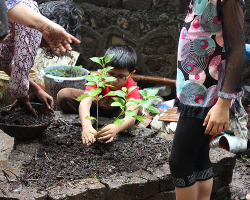 Everyone lends a hand, saplings are planted and urban farmers are born